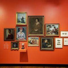 브리즈번 박물관 여행 사진