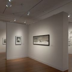 Ogden Museum of Southern Art User Photo
