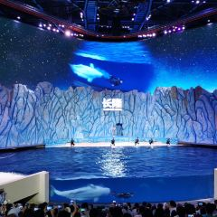 Zhuhai Chimelong Ocean Kingdom User Photo