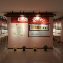 Shanghai History Museum (Pudong) User Photo