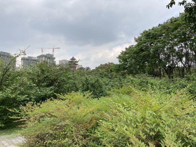 탑자산 공원