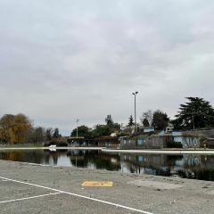 Kitsilano Pool User Photo