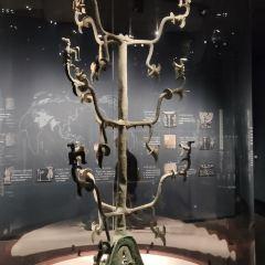 삼성퇴박물관 여행 사진