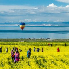 Bird Island of Qinghai Lake User Photo