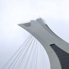 奧林匹克公園用戶圖片