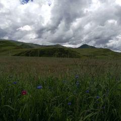 Yaha Scenic Area User Photo