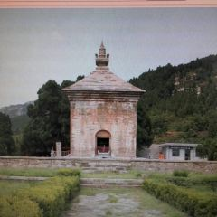 Simen Tower User Photo