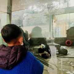 윤고르 동물원 여행 사진