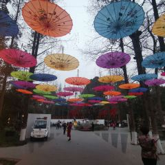 바이화탄 공원 여행 사진