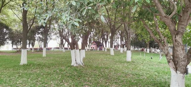 한커우 강변공원