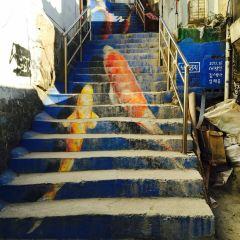 梨花壁畫村用戶圖片
