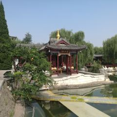九龍湖用戶圖片