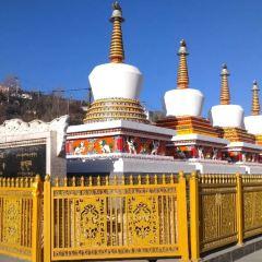 塔塔爾寺用戶圖片