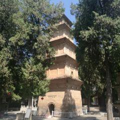 興教寺塔のユーザー投稿写真