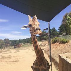 National Zoo and Aquarium User Photo