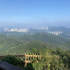 蓮花山觀景台用戶圖片