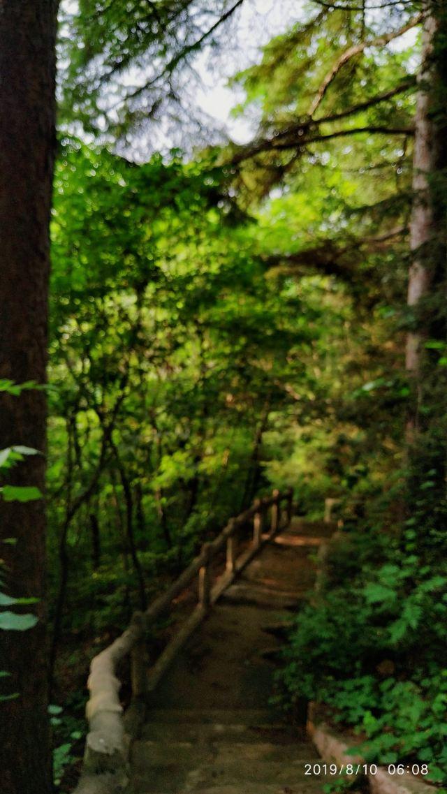 화목 삼림공원