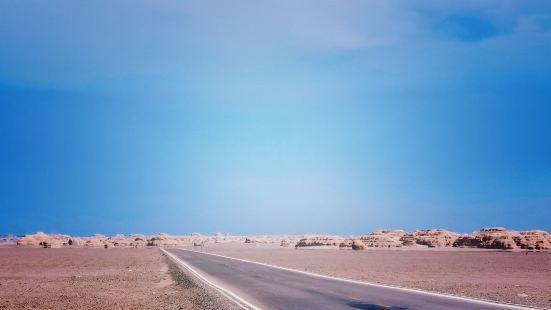 一条公路向远方延伸,长长的,看不到尽头。在它周围延伸开来的,