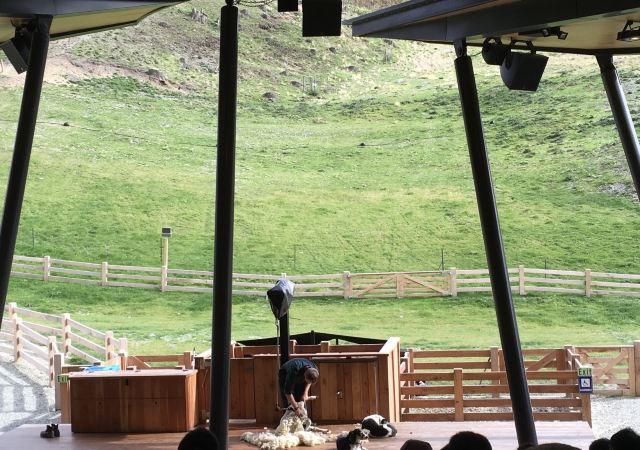Walter Peak Farm