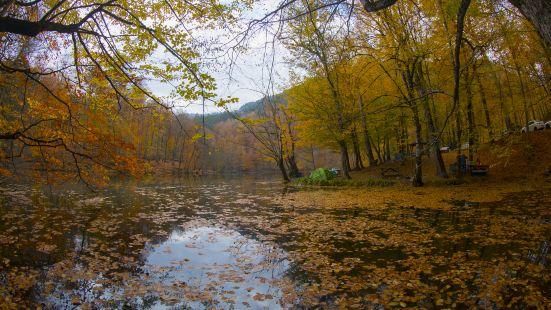 水墨汀溪風景區