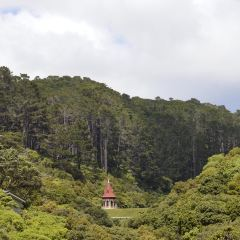 Zealandia (Karori Wildlife Sanctuary) User Photo