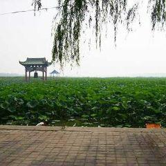 BaiYun Lake User Photo