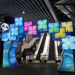 국가컨벤션센터 여행 사진