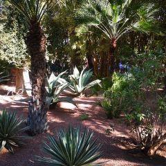 Jardin Majorelle User Photo