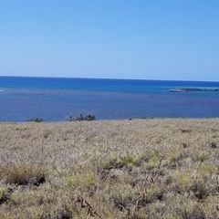Kailua Pier User Photo