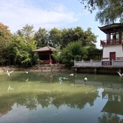 Zhuangzi Ancestral Hall User Photo