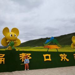 Biandukou Ecology Leisure Tourism Area User Photo