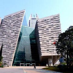 廣州圖書館張用戶圖片