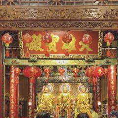 龍蓮寺用戶圖片