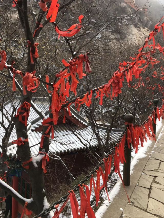 Fenghuanggu Forest Park