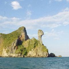 Chicken Island User Photo
