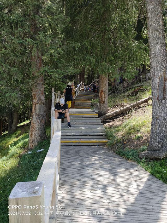 天池森林公園