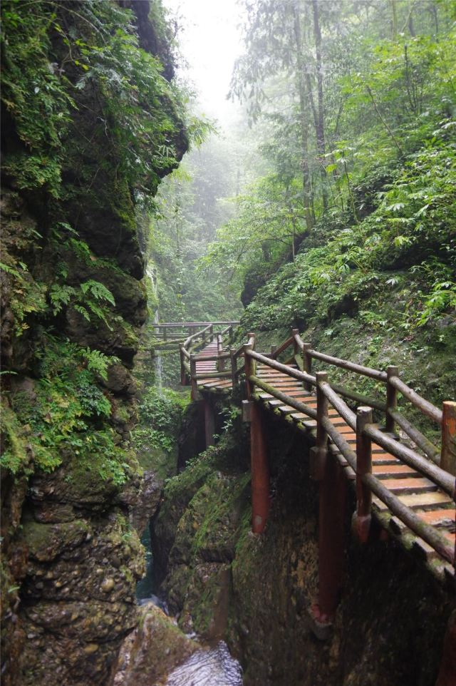 Longyinxia Plank Road
