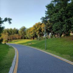 허린 생태공원 여행 사진
