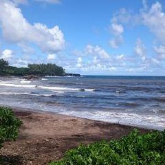 Koki海灘用戶圖片