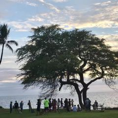 Ulua Beach User Photo