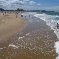 加來海灘用戶圖片