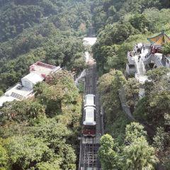 山頂纜車用戶圖片