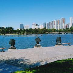 龍湖公園用戶圖片