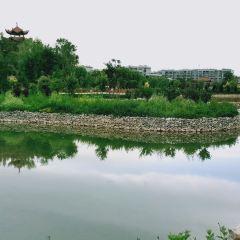 Xijiao Park User Photo