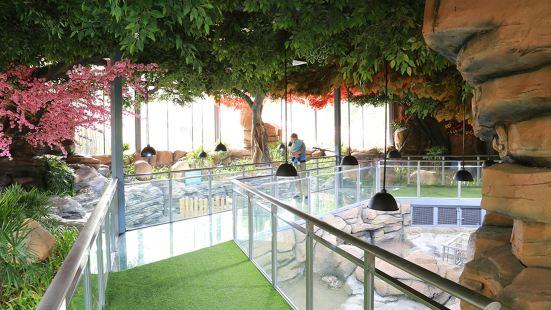 紫馬嶺動物園