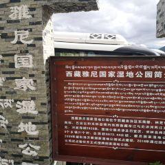 苯日景區用戶圖片