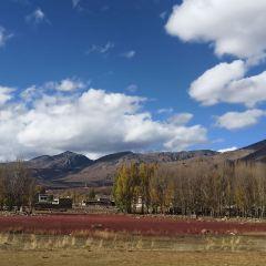 Red Grassland User Photo