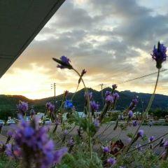 Tsukiura Forest Nature Park User Photo