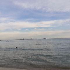 大東海用戶圖片