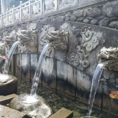 蝴蝶泉用戶圖片